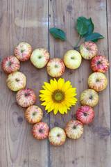 Sommerdekoration mit Sonnenblume und Äpfeln als Herzornament