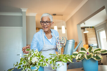 Senior Woman With Green Plants and Flowers at home. Senior Woman Caring for House Plant. Woman Taking Care of Plants at Her Home Portrait of Elderly Woman Gardening at Home.