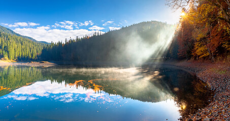 lake landscape at foggy sunrise. misty scenery reflecting in the water. wonderful autumn morning in fall season. trees in colorful foliage
