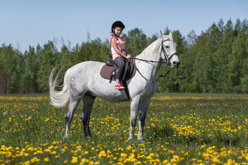Pretty girl is on a white horse breed Orlov trotter
