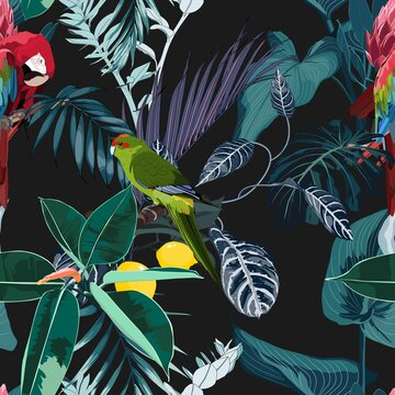 Tropical night vintage wild birds and parrots pattern, palm tree, palm leaves and plant floral seamless border black background. Exotic jungle wallpaper.