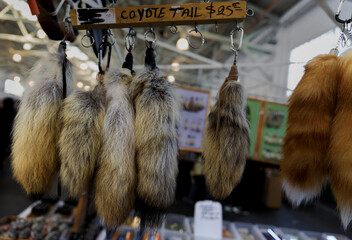 Native American dance regalia coyote and fox tails for sale at a powwow, San Francisco