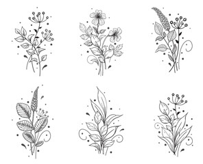Hand Drawn Floral Set with Flowers and Leaves Bunches