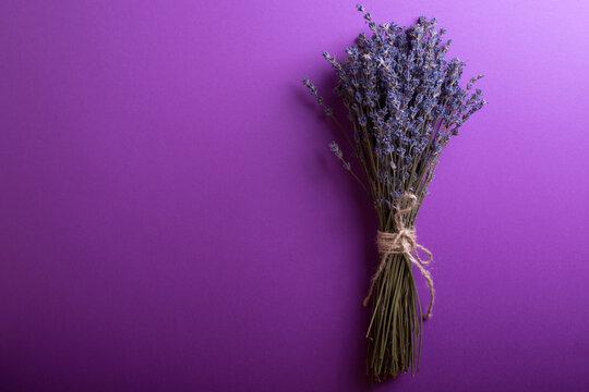 lavender bouquet on a blue background