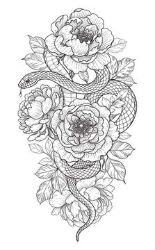 Vector Twisted Snake and Peony Flowers