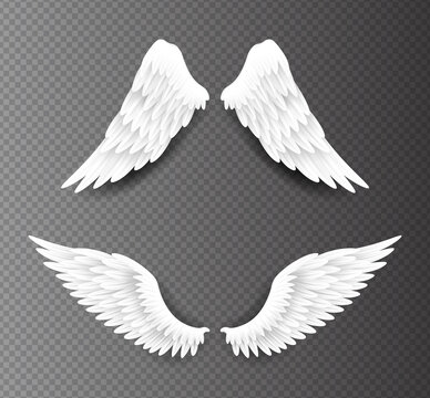 Pair of beautiful white angel wings isolated on transparent background, 3D realistic vector illustration. Spirituality and freedom