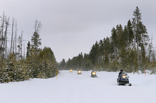 Touring snowmobilers on Norris Canyon Road in Yellowstone National Park in winter