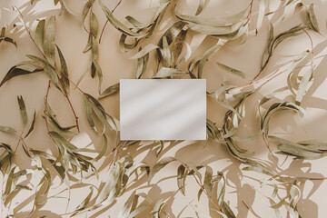 Blank paper sheet card with empty copy space, dry leaves and floral sunlight shadows on beige...