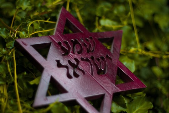 Star of David on natural green background