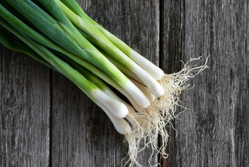 A Bunch of Green Onions