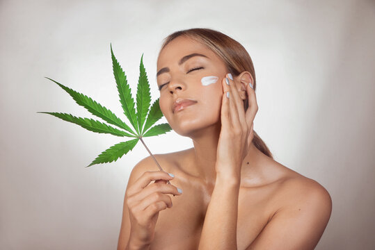 Woman applying CBD facial cream made from cannabis extract for a natural skin treatment. Portrait of young woman with cannabis leaf. Cosmetology and treatment concept. Isolated on gray background