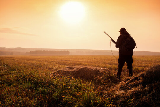 Hunter on the background of the sunset are on the field. Hunter In Sunrise With Shotgun in Autumn Season.