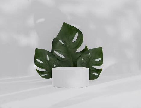 3D podium display with monstera deliciosa and palm shadow copy space. Minimal white background with pedestal, green plant leaves. Trendy natural product promotion banner. Simple tropical 3d render