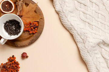 Flat lay autumn composition. White cup with tea leaves, wooden plate, knitted fashion sweater or plaid, yellow maple leaves, cinnamon, dry mountain ash, orange on beige background top view copy space
