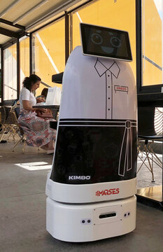 A robot takes orders and serves food in a Cairo restaurant amid the coronavirus disease (COVID-19)