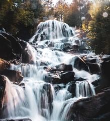 Foto op Canvas Bos rivier Chutes Waber au parc de la Mauricie / Waber Falls in National Park of the Mauricie