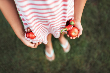 Child holding freshly picked vegetables in her pocket and her hand