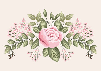 pink rose flower with leaves painting design, natural floral nature plant ornament garden decoration and botany theme Vector illustration