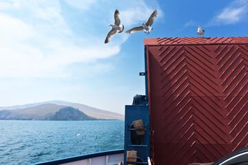 Baikal Lake. Olkhon Gate Strait. Seagulls on a regular passenger ferry to Olkhon Island. Summer travel