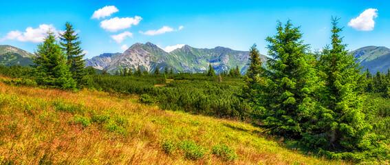 Summer mountain panoramic landscape in Western Tatras, Slovakia