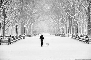 Central Park the Mall snow storm Fotomurales