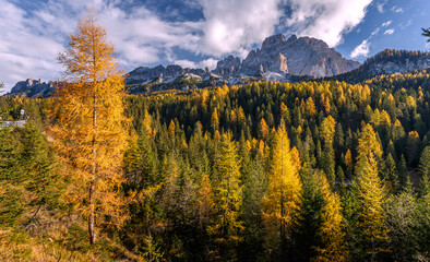 Autumn mountains landscape. Amazing aerial view of the Dolomite Alps at sunny autumn day with yellow larches below and valley gloving by fsun and high mountain peaks behind.