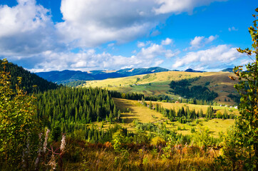 Wall Mural - Panoramic mountain view. Summer in the mountains