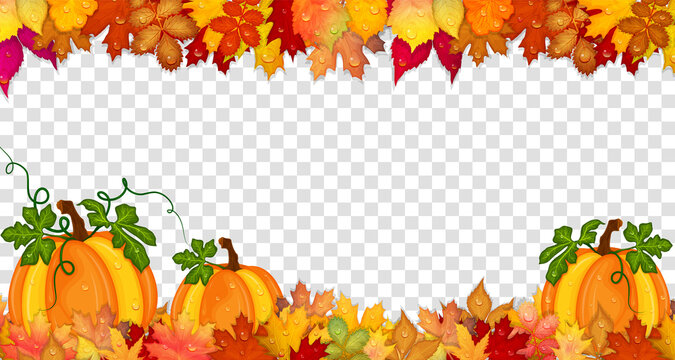 Autumn frame with pumpkins and colorful leaves isolated on transparent background. Vector illustration