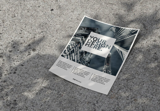 Flyer Mockup on a Concrete Background with Shadows from Plant