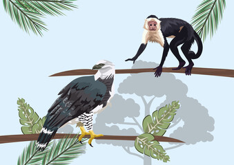 monkey and eagle animals wild in the jungle Papier Peint