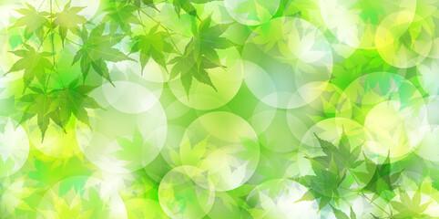 新緑 もみじ 水彩 背景