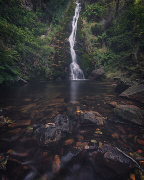 The Wishing Well, a waterfall in the forest.