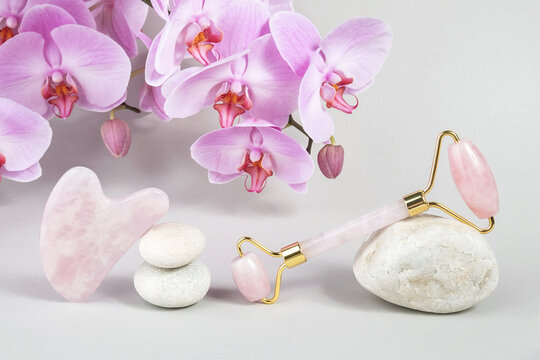 Crystal rose quartz facial roller and massage tool jade Gua sha on stones and natural orchid flower on grey background. Facial anti-age massage for natural lifting and toning treatment at home