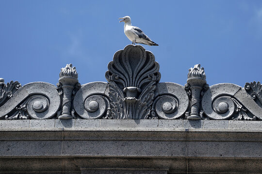 A bird sits on the U.S. Postal Service Farley building that Facebook announced it would lease for office space in the Manhattan borough of New York City
