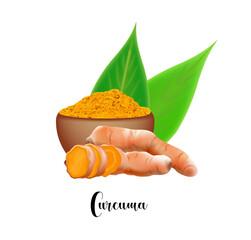 Fototapeta Curcuma turmeric meal and root in realistic style isolated. obraz