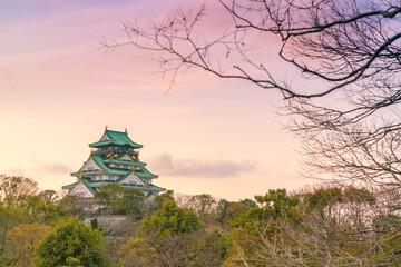 Fototapeta Osaka castle in evening, Osaka, Japan.