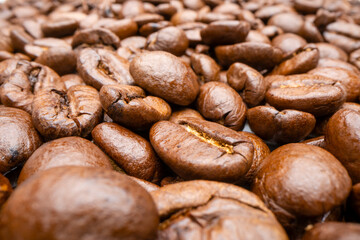 Close-up view of coffee beans