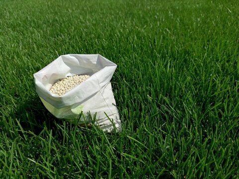 Fertilizer for grass, lawn, meadow in a bag of white granules on a background of green grass. Close up of mineral fertilizer granules used on grass lawns and gardens to maintain health and growth.