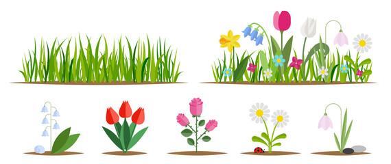 Fototapeta Flower and grass flat icon set isolated on white. Various garden flowers including rose, tulip, orchid, Espatifilo, bells flowers, Bellis perennis, bulb flowers. obraz