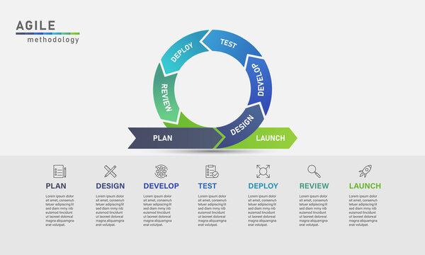 Agile development process infographic