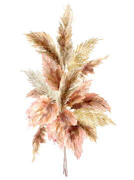 Watercolor tropical bouquet with dry pampas grass and gold textures. Hand painted exotic card isolated on white background. Floral illustration for design, print, fabric or background.