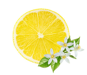 Fototapete - Fresh lemon isolated on white background