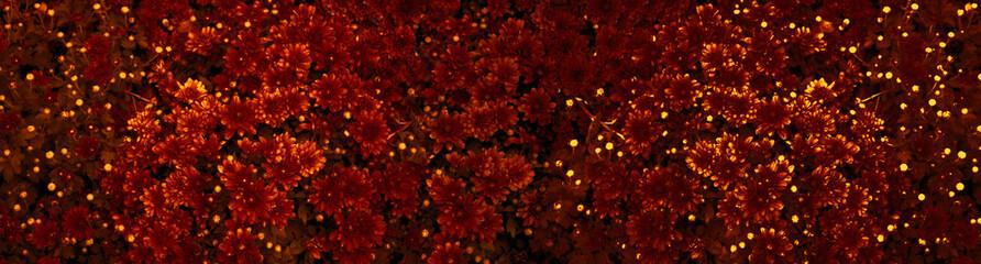 Autumn still life. Autumn background. Autumn season background, Autumn postcard. Banner. copyspace
