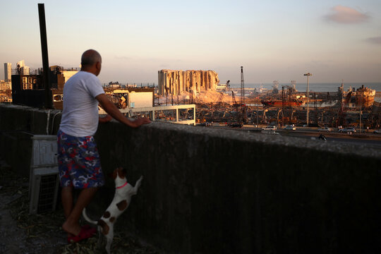 Michel Assad with his dog Pepsi look at the damaged site of Tuesday's blast in Beirut's port area from the roof of his home in Beirut