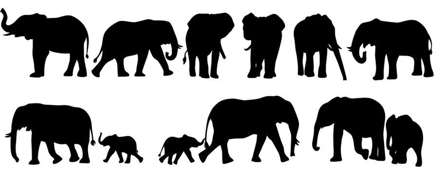 set of elephant silhouettes. Elephant shadow hand drawn. Flat vector illustration.