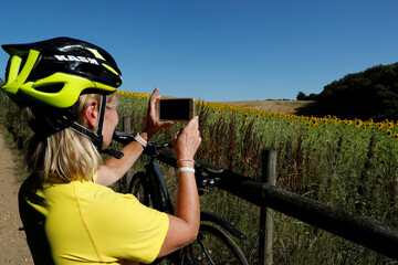 A woman takes a picture of field of sunflowers, amid the coronavirus disease (COVID-19) outbreak, in Chorleywood