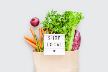 Fresh organic vegetables in craft shopping bag