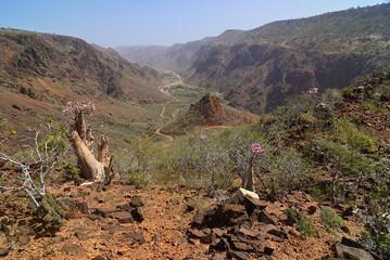 Wadi Daerhu canyon on the island of Socotra Yemen