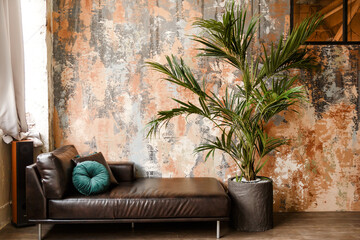 Black leather couch, sofa with green potted palm tree plant in pot with tiles, tiled floor in hall,...
