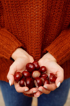 Woman holding chestnuts in hands